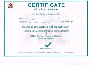 Working Well Together 2017 Tom Smyth